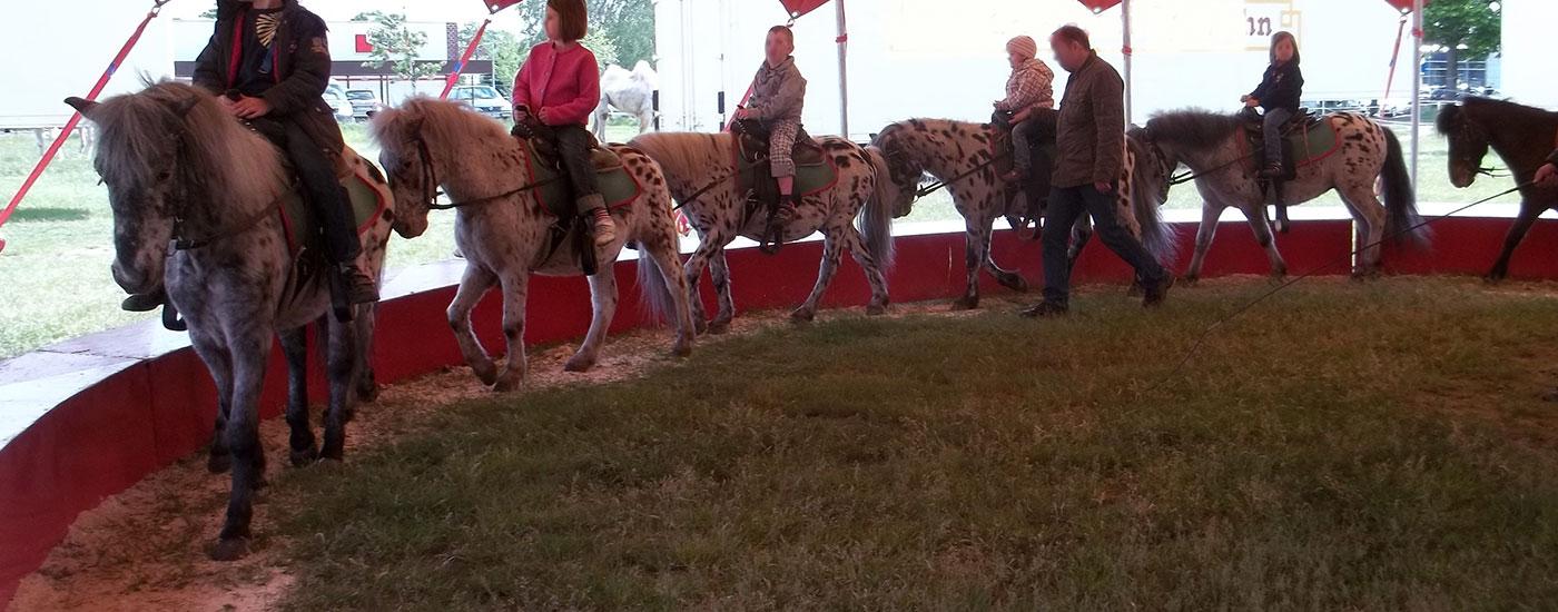 Ponykarussell-c-Elisa-Gallus-header