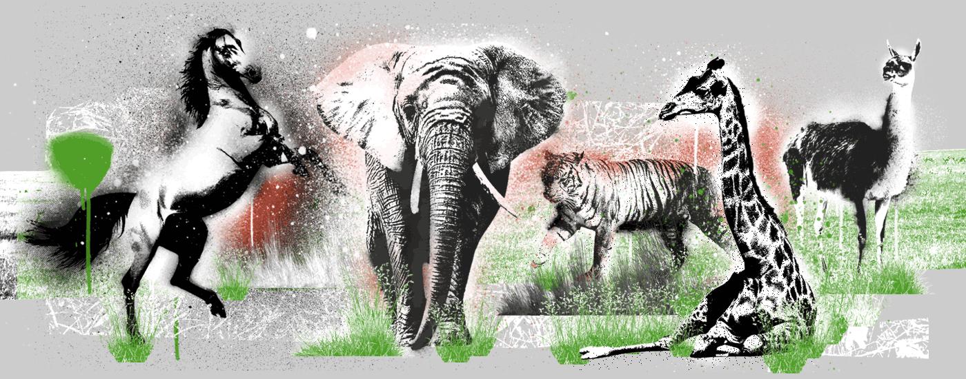 Zirkus-Collage-Header
