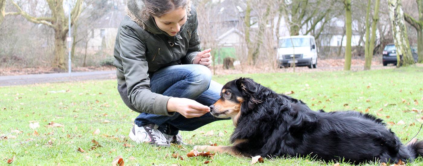 Hund-Training-liegt-Frau-Leckerchen-Header